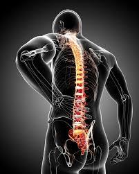 Osteopatipa